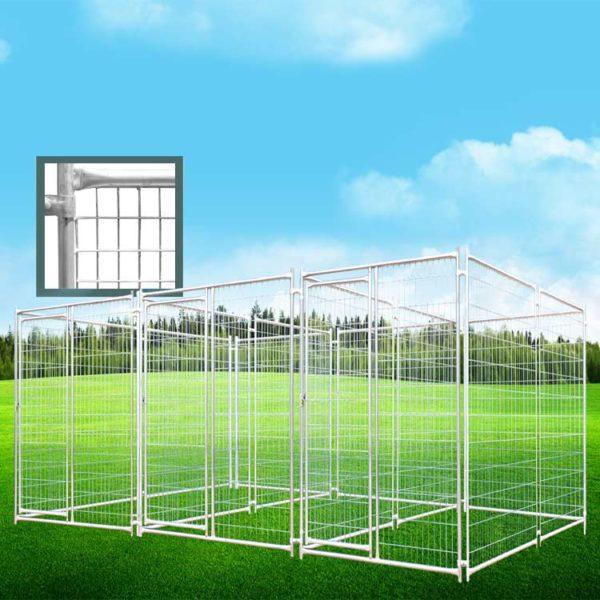 mesh panel dog ran