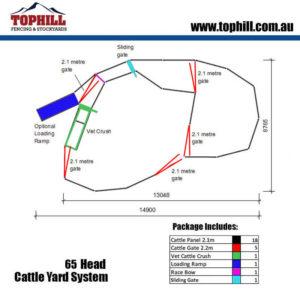 65-head-cattle-yard