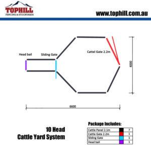 10 HEAD Cattle Yard